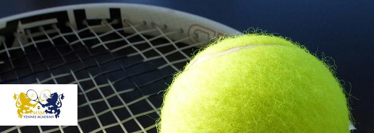 Обучение большим теннисом в европе 2007 1 с обучение скачать бесплатно